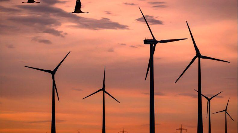 Statkraft da Noruega aloca R$2,5 bi em parque eólico na BA